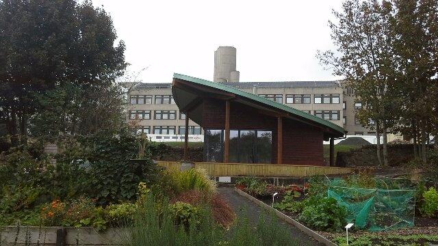 Ninewells Community Garden - Leaf room landscape including garden